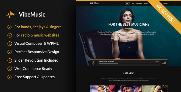 Download VibeMusic - Musicians, Deejays, Singers, Bands Wordpress Theme Radio WordPress Themes