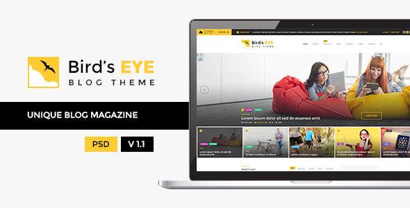 Download Birds Eye - Blog and Magazine Template Portal Blogger Templates