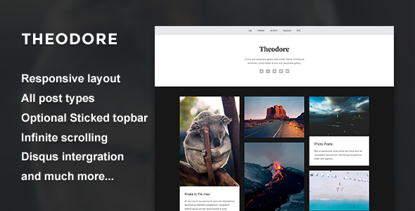 Download Theodore - A Responsive Gallery Theme Photo Gallery Tumblr Themes