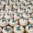 340_butterflycupcakes
