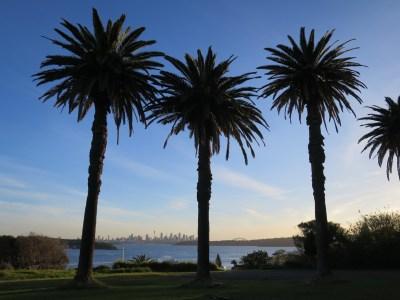 Sydney Watsons Bay view