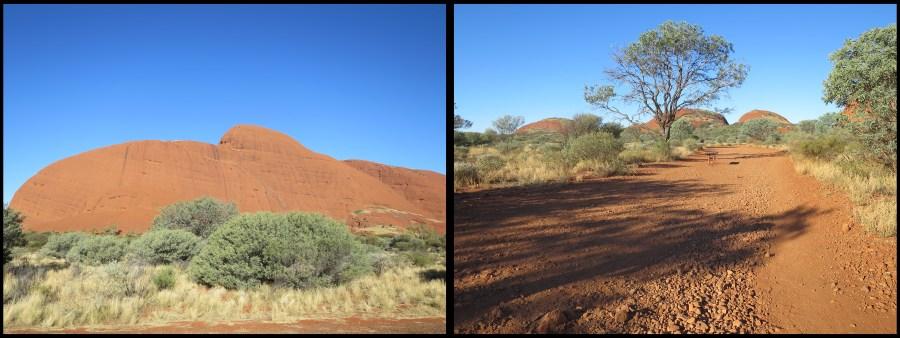 Uluru 14