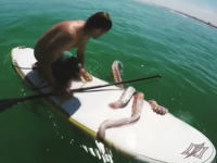 ダイオウイカ?ロープの絡まった超巨大イカを救ってあげたパドルボーダー