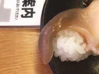 スシローの生きてる寿司がちょっと不気味。動画がツイッターで大人気に。
