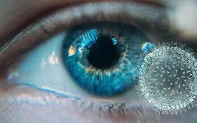 SARS-CoV-2 : Premier cas rapporté de perte permanente de la vision liée à la maladie