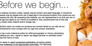 The terms and conditions page of the Eros Guide website.