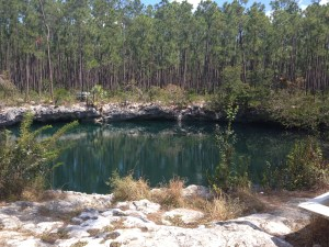 Yep! That's a BLUE HOLE! I can cross that off my bucket list!