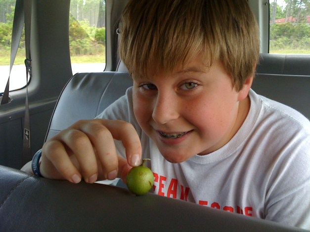 This little fruit, the ganip (gunip?) will be ripe when we are visiting! My son (shown here in 2009) is really mad he'll miss them!