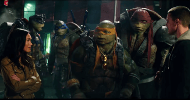TMNT 2 Casey and Turtles