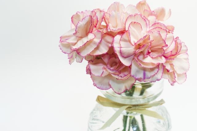 カーネーションの花瓶の写真