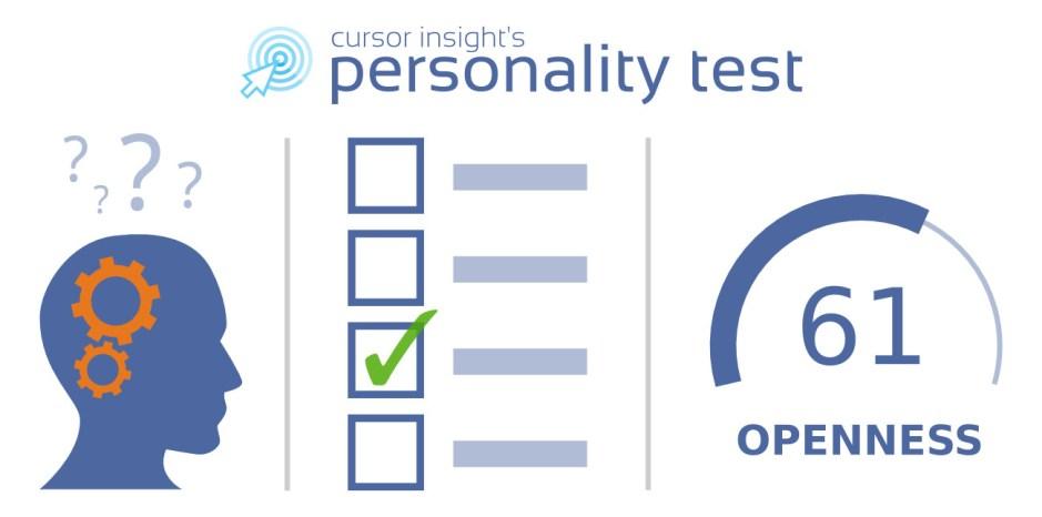 cursor insight survey
