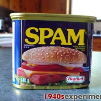 Spam Spam Spam Spam- everybody loves Spam..