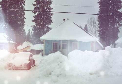 Snowy '67 Beetle — Amanda De Vito