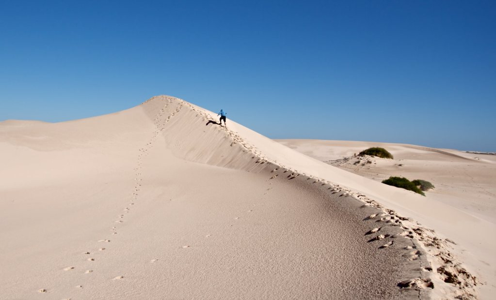 Sand Dunes, Mungo National Park      Buy Now