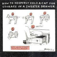 How To Properly Fold A Cat