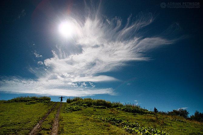 Nature… Photographer Adrian Petrisor