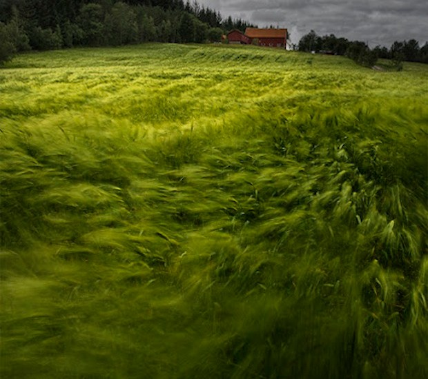 Windy Day in Norway