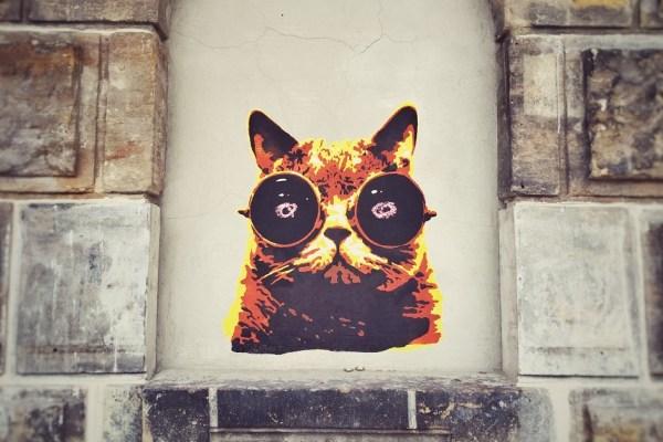 Dresden_Street Art_Katze_1 THING TO DO