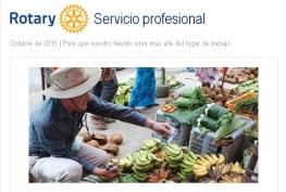 Rotary Servicio Profesional