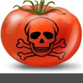 Reality Behind the Myth: Why GMOs Can Never Be Safe