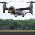 1-Obama-dog-Osprey-bo