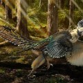 JURASSIC REALITY: Raptor's Ancestor Was 'Winged Dragon'