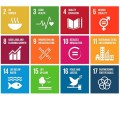 Agenda 2030 Translator: Decoding the UN's New 'Sustainable' Development Goals