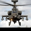 Egyptian Army Slaughter Mexican Tourists Having Picnic, Using US-Supplied Apache Gunships