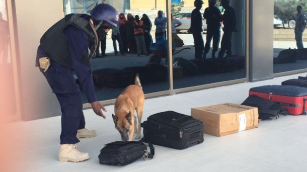 Explosive-detection-dogs-now-screen-passengers-luggage-at-the-Mogadishu-airport-in-Somalia.