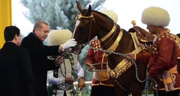 erdogan horse