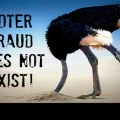 VIDEO: US Elections: More Voter Fraud Emerges