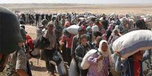 OKB: Arrin në mbi 100 mijë numri i kurdëve sirianë të larguar drejt Turqisë