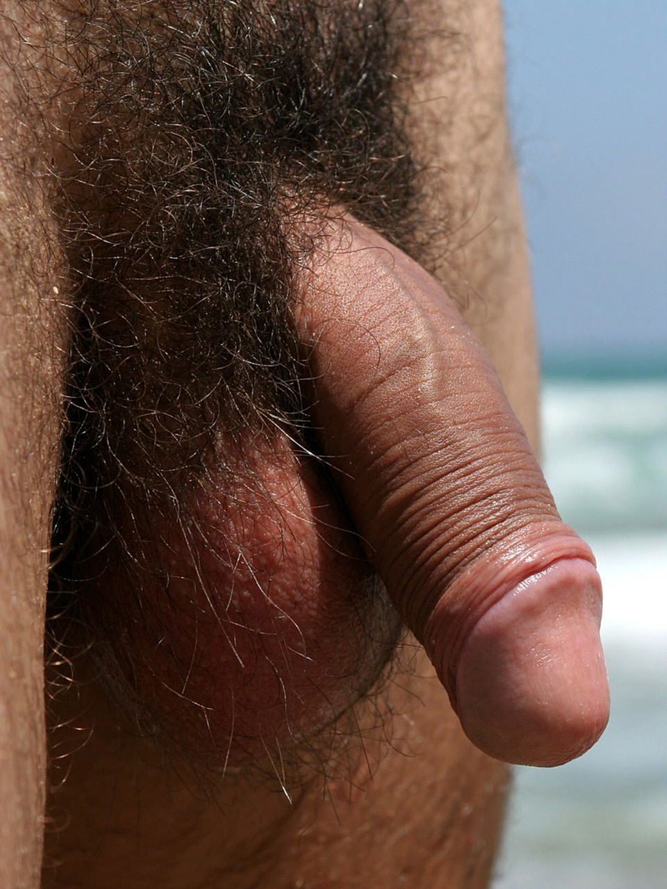Big fat hairy dick