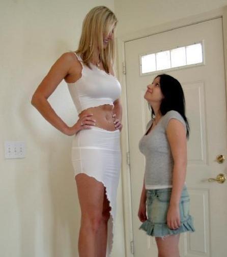 tall volleyball girls