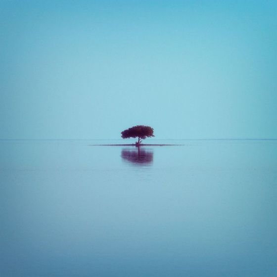 Lost in Serenity … by Ahmed Abdulazim