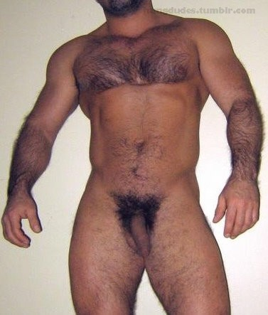 hung daddy tumblr