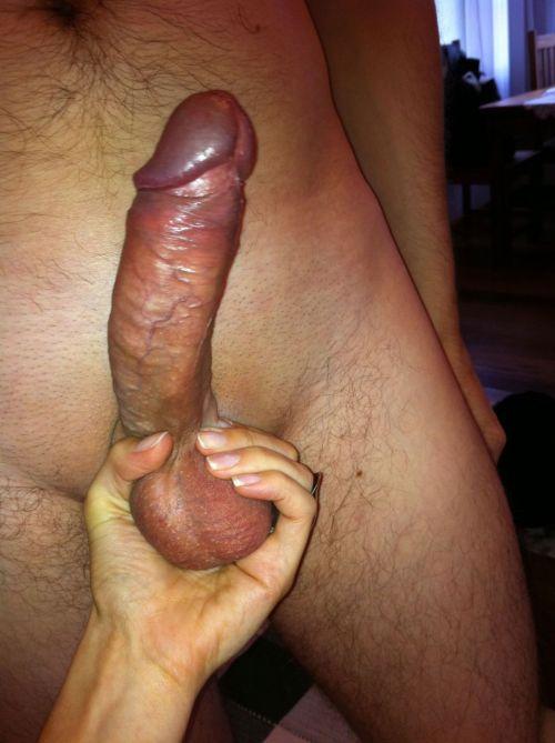 husband erection tumblr