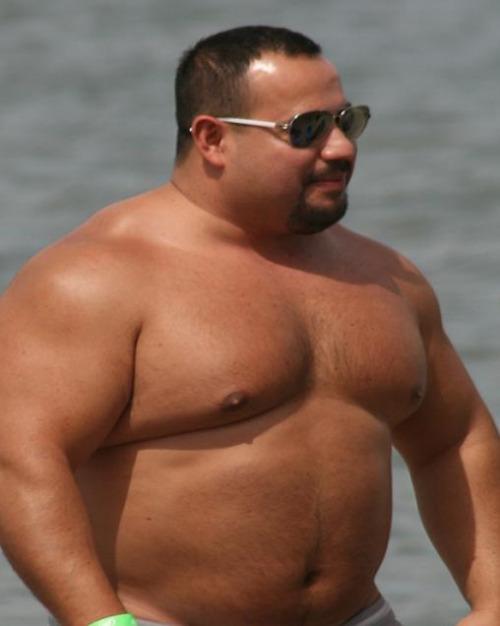 saul harris gay bear