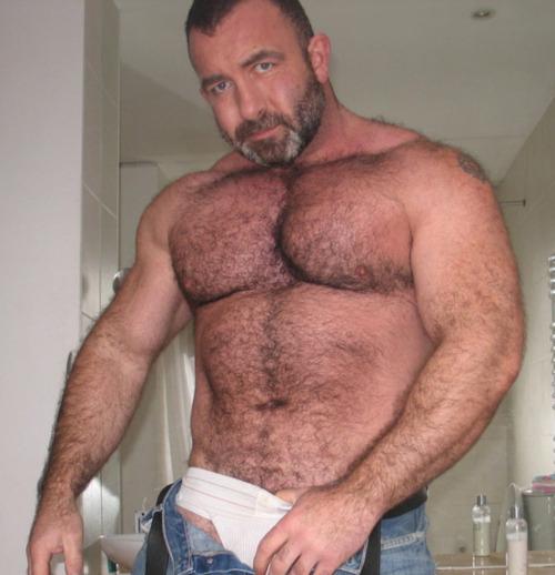 big muscle bears men