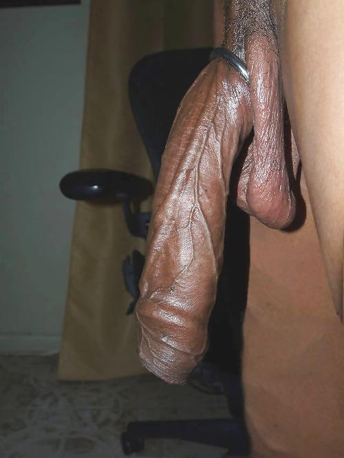 big black dick tumblr