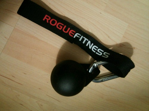 Rogue Fitness 3