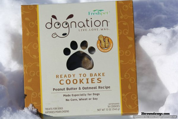 Dognation Peanut Butter Cookies