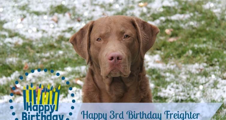 Happy Birthday Freighter