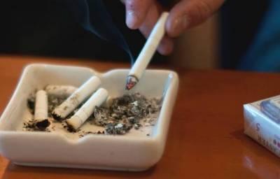 小学生がうまそうにタバコを吸う動画がネットにアップされてる件 また炎上の予感