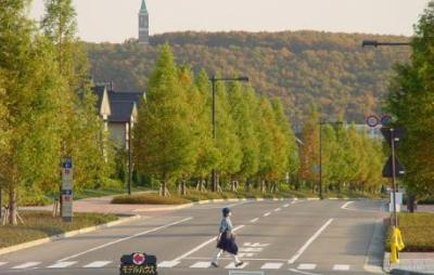 宮城県仙台市にある日本一美しい住宅地の景観 ※動画像※