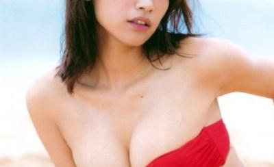 【画像】こういう形の水着を着た女の子が好き