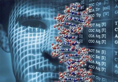 【そんなバナナ】人間と遺伝子の構造が近い10のもの
