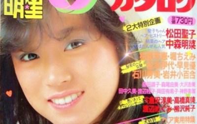 【画像】昔のヘアカタログの昭和アイドル見てるの楽しいwwwww