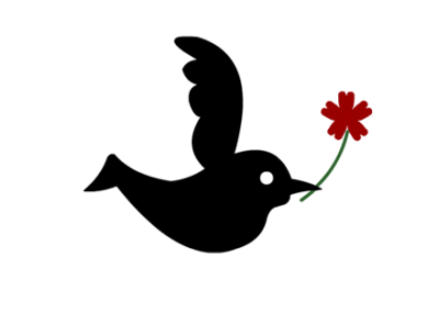 『この世で最も黒い鳥』の秘密が判明 →動画像
