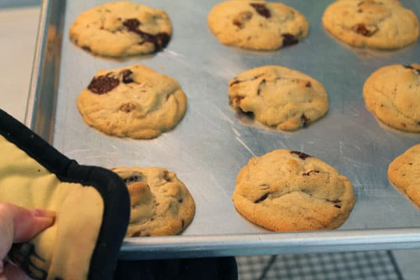 Hazelnut Espresso Cookies - #CreativeCookieExchange - 2 ...